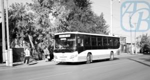 автобус_reswm
