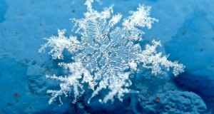 beautiful_snowflakes_33