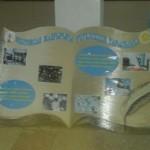 Это панно в формате 3D украшает школьный холл