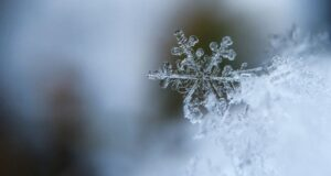 Мороз в новогоднюю ночь