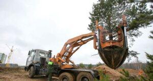Актобе нужна машина для пересадки деревьев